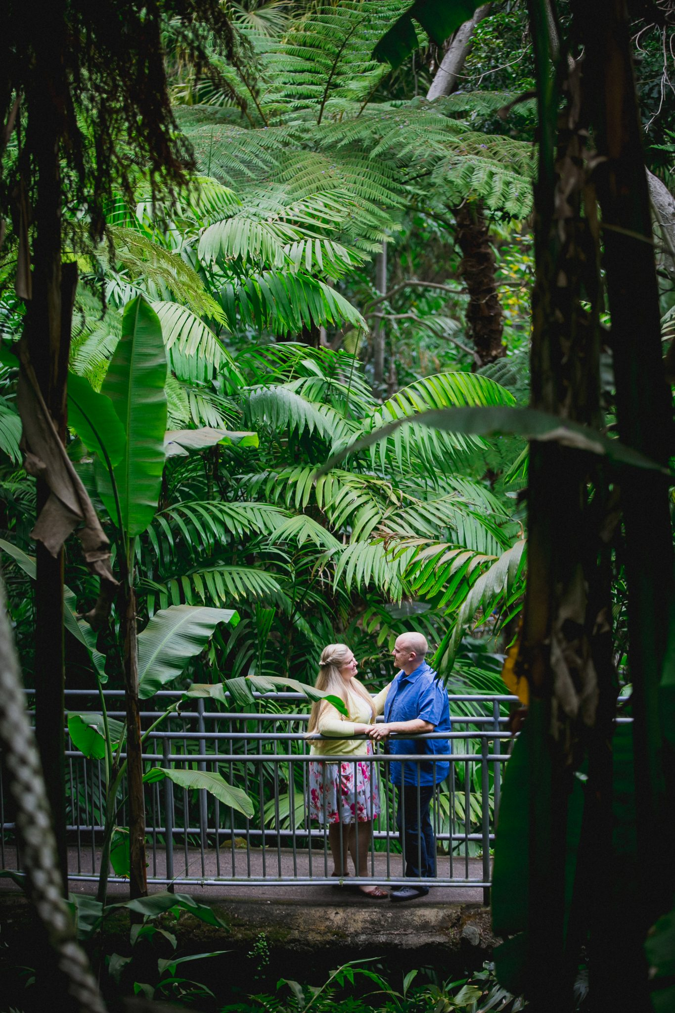 San Diego Zoo engagement images in fern trail