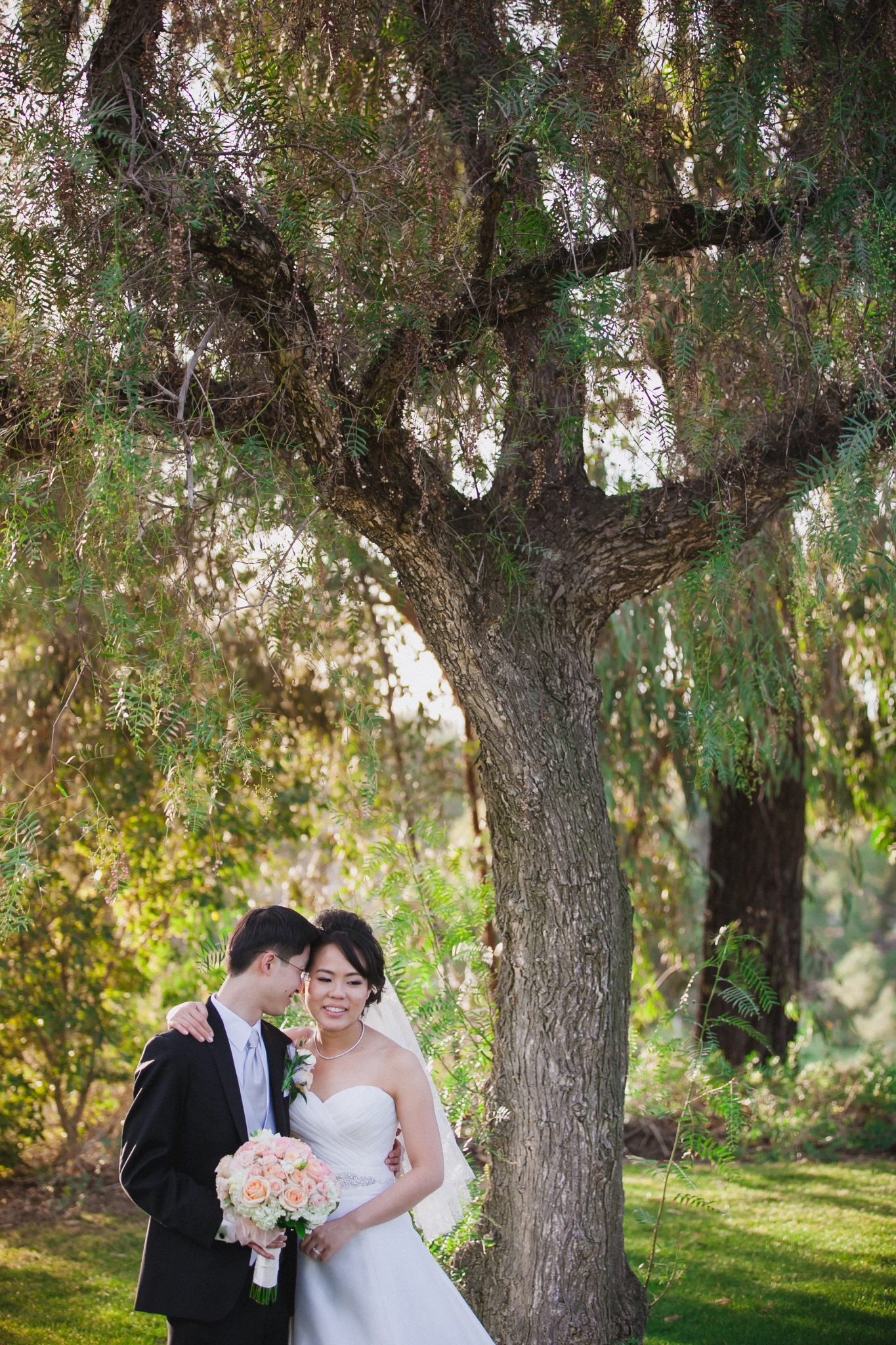 Wedding couple posing under a tree in San Diego