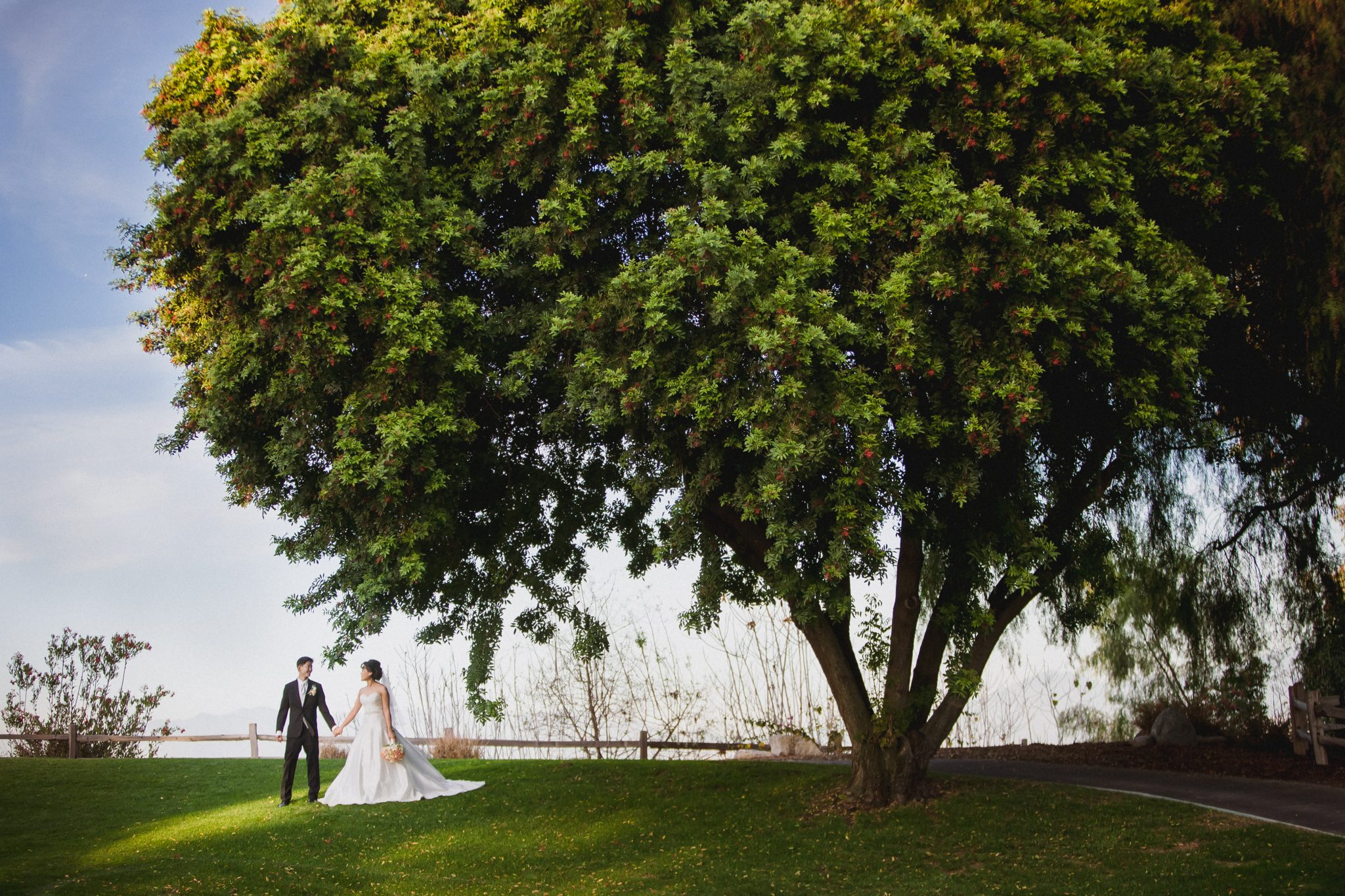 Portrait of the couple walking under a tree