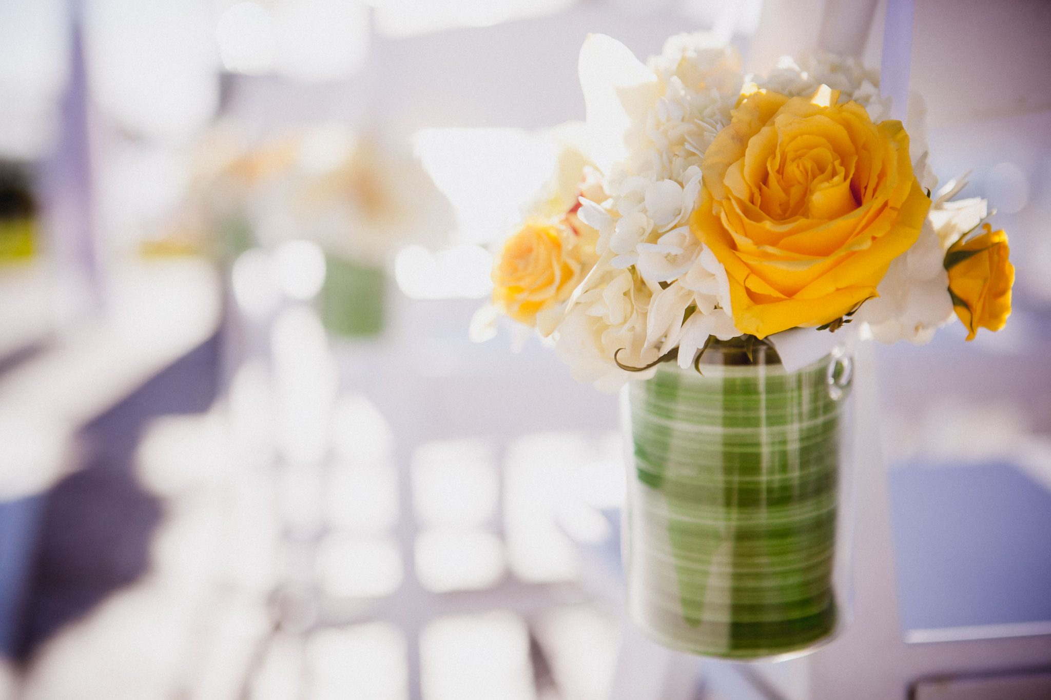 Yellow roses hanging from ceremony chairs as decorations
