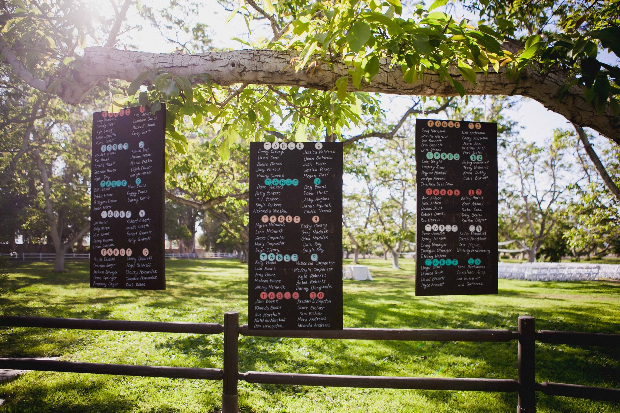 Reception seating chart sign written on paint chalkboards hung in a tree